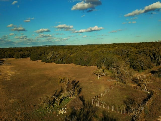 CR 412, Goldthwaite, Texas 76844, ,Farm/Ranch,For Sale,CR 412,1067