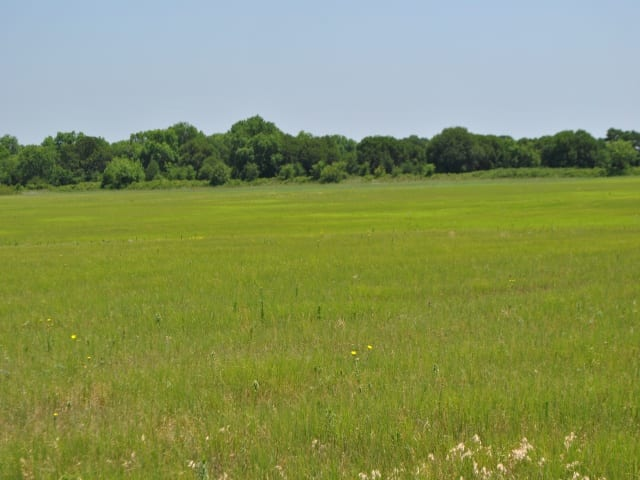 2097 FM 2273, May, Texas 76857, ,Farm/Ranch,For Sale,FM 2273,1069