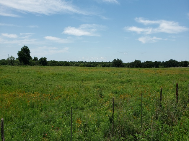 2289 HWY 377- COMANCHE- Texas 76442, ,Commercial,For Sale,HWY 377,1085