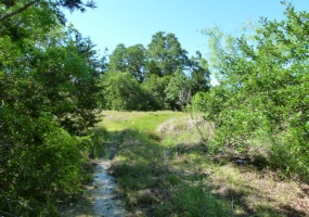EARLY, Texas 76802, ,Vacant Lots,For Sale,1115